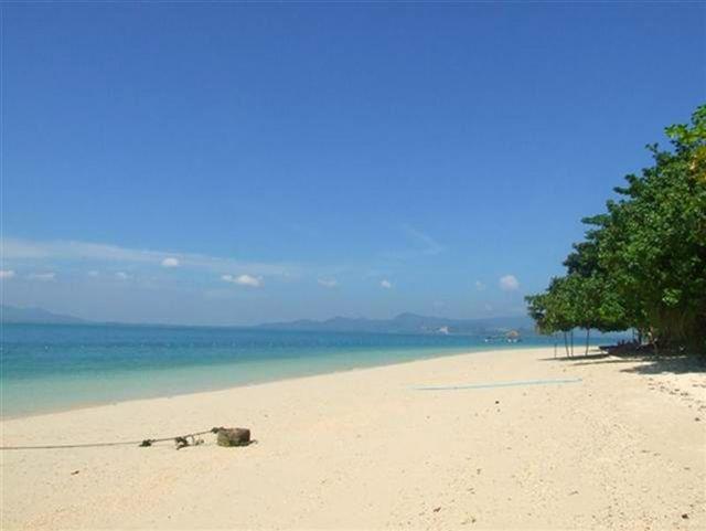 ขายที่ดินบนเกาะมะพร้าว  ใกล้ The Village  เนื้อที่ 78.9 ตร.วา ขาย 1 ล้านบาท