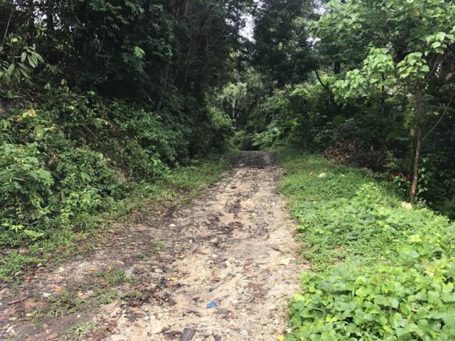ขายที่ดินกมลาถ.สายเก่ากมลา-ป่าตองตรงข้ามVilla Naka Wanna 32 ไร่ ขาย 5 ล้านต่อไร่