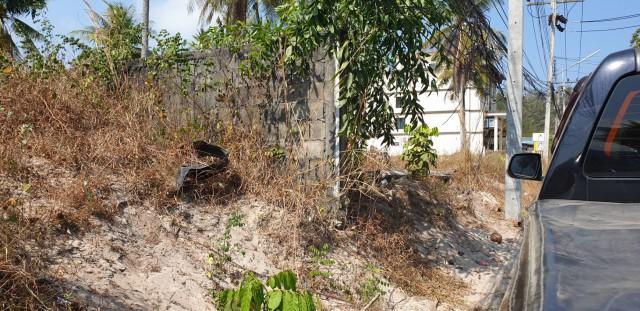 ขายที่ดินถลางใกล้ทะเลหาดในยางปากซ.ในยาง2-1 เนื้อที่ 1 ไร่เศษ ขาย 45 ล้านต่อไร่