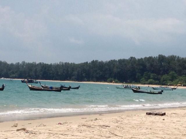 ขายที่ดินถลางใกล้ทะเลหาดในยางในซ.บางม่าเหลา2-3เนื้อที่4.5ไร่เศษ ขาย15 ล้านต่อไร่