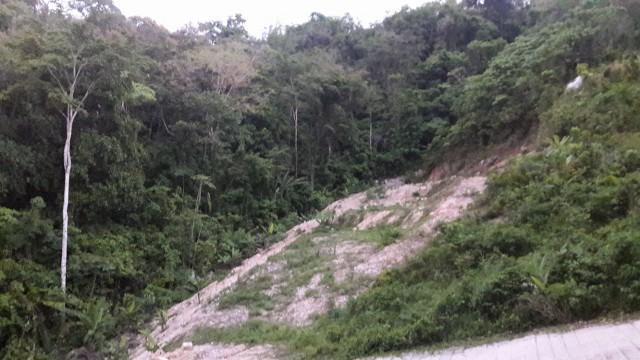 ขายที่ดินเนินเขากมลาใกล้อบต.กมลา บ้านโคกยาง เนื้อที่ 510 ตารางา ขายเหมา 7.2 ล้าน