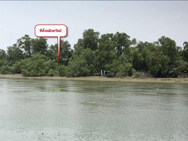 ขายที่ดินติดแม่น้ำแม่กลอง-อัมพวา ใกล้วัดท้ายหาด เนื้อที่ 2ไร่เศษ ขายเหมา10 ล้าน