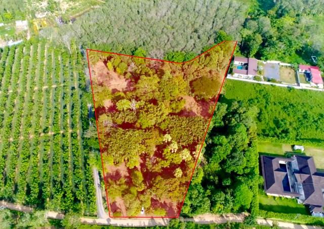 ขายที่ดินถลางโซนป่าคลอก ในซอยนาเหนือ เนื้อที่ 8.5 ไร่ขาย4.8ล้านต่อไร่