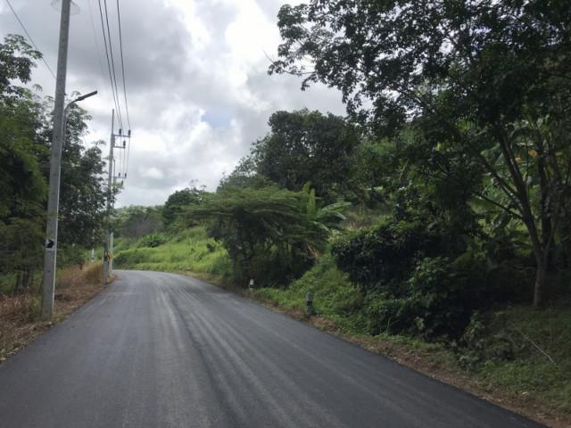 ขายที่ดินถลางโซนป่าคลอก ตรงข้ามทางเข้ายามู เนื้อที่ 10 ไร่เศษ ขาย 4.5 ล้านต่อไร่